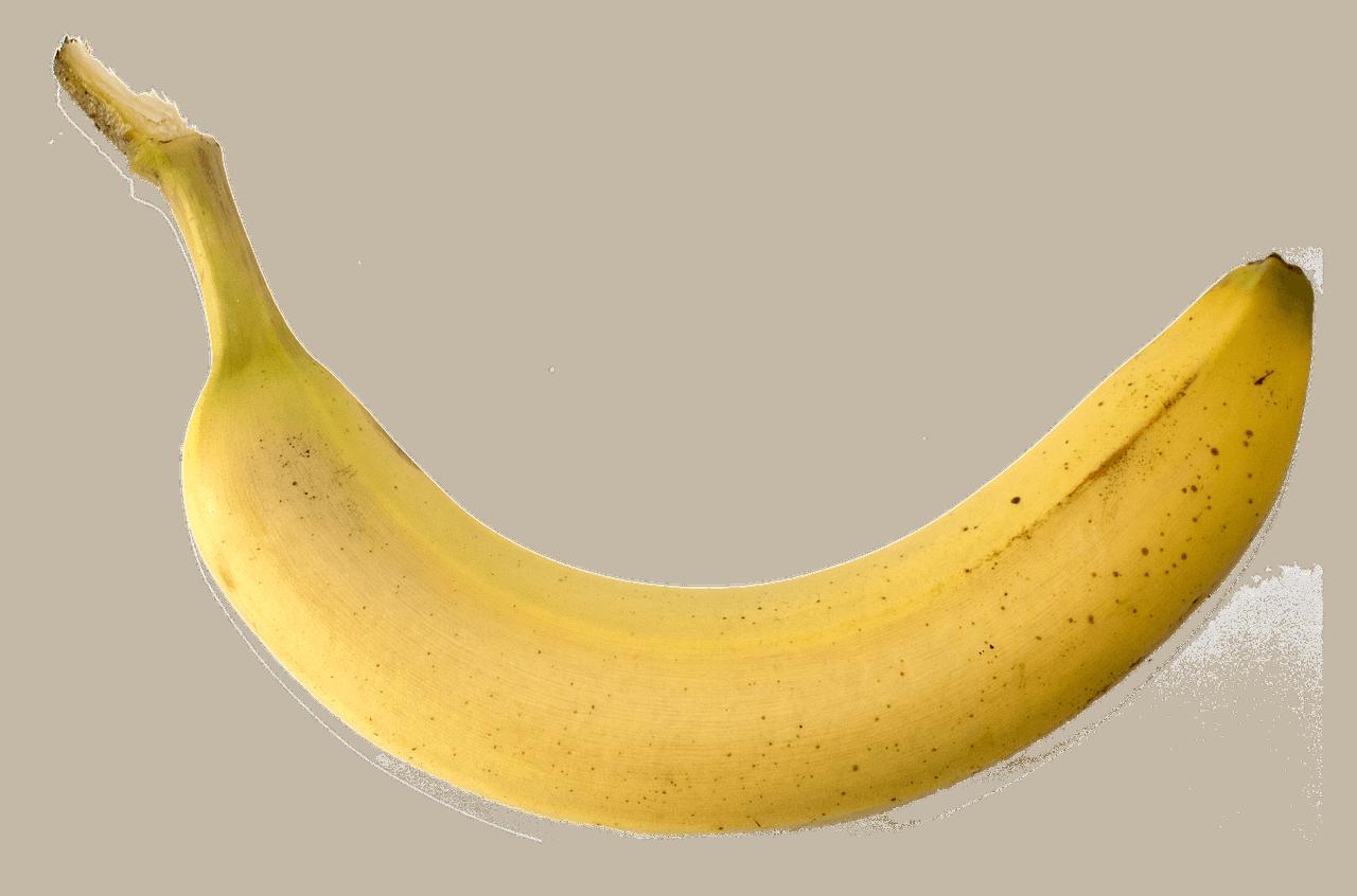 w zimnym penis się zmniejsza